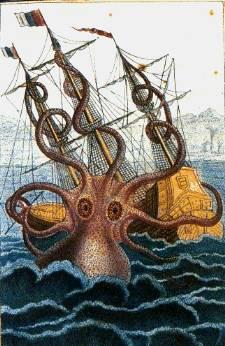 Octopus Kraken