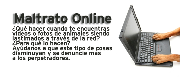 Maltrato Online